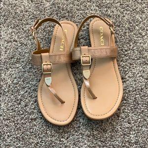 Coach sandals!